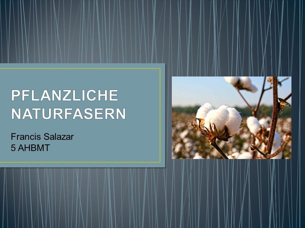 Francis Salazar 5 AHBMT