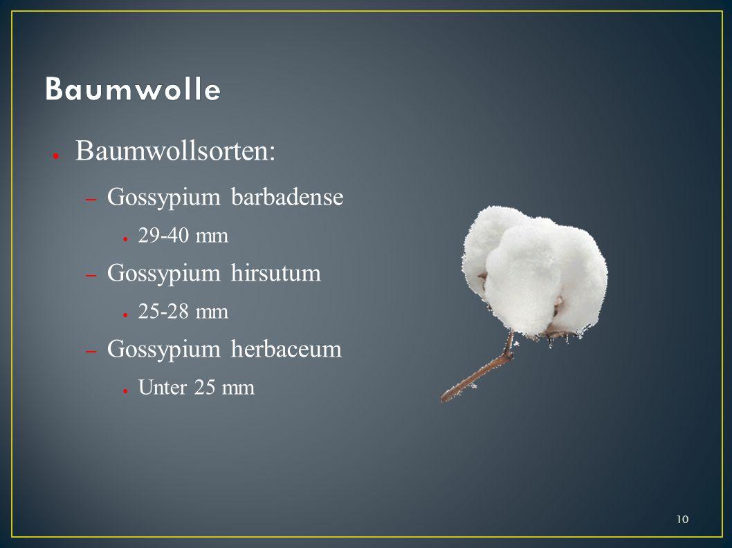 Baumwollsorten: – Gossypium barbadense 29-40 mm – Gossypium hirsutum 25-28 mm – Gossypium herbaceum Unter 25 mm 10