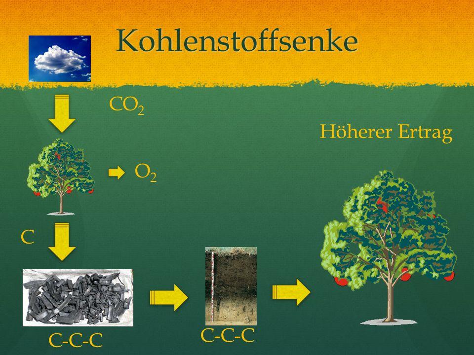 Kohlenstoffsenke C-C-C O2O2 Höherer Ertrag C