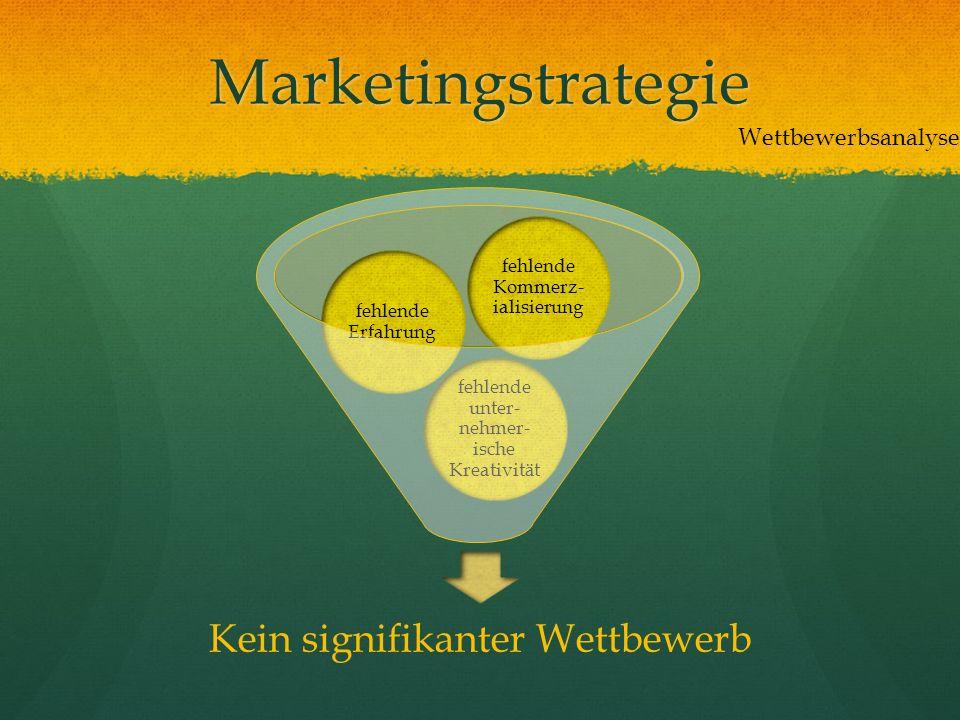 Marketingstrategie Kein signifikanter Wettbewerb fehlende unter- nehmer- ische Kreativität fehlende Erfahrung fehlende Kommerz- ialisierung