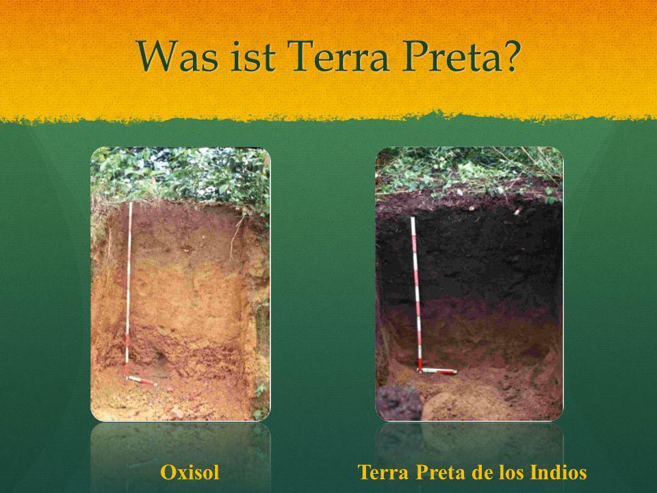Was ist Terra Preta? OxisolTerra Preta de los Indios
