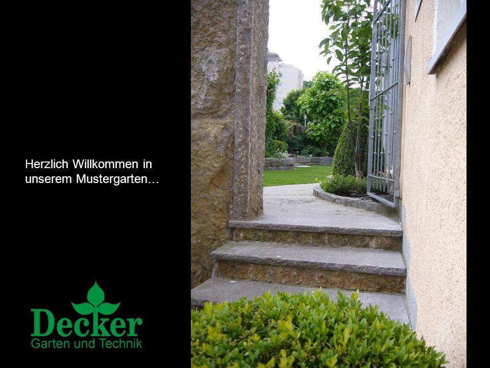 Beratung, Planung und Realisierung von pflegeleichten Wohlfühloasen Jürgen Herrmannsdörfer Gärtnermeister aus Leidenschaft Ein Unternehmensbereich der Herrmannsdörfer Hydrokultur GmbH 97082 Würzburg | Frankfurter Str.