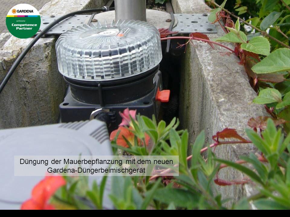 Rasenbewässerung im Einsatz