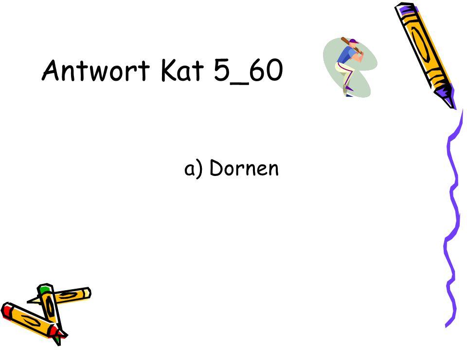 Antwort Kat 5_60 a) Dornen