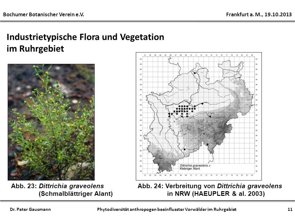 Industrietypische Flora und Vegetation im Ruhrgebiet 11 Bochumer Botanischer Verein e.V. Frankfurt a. M., 19.10.2013 Dr. Peter Gausmann Phytodiversitä