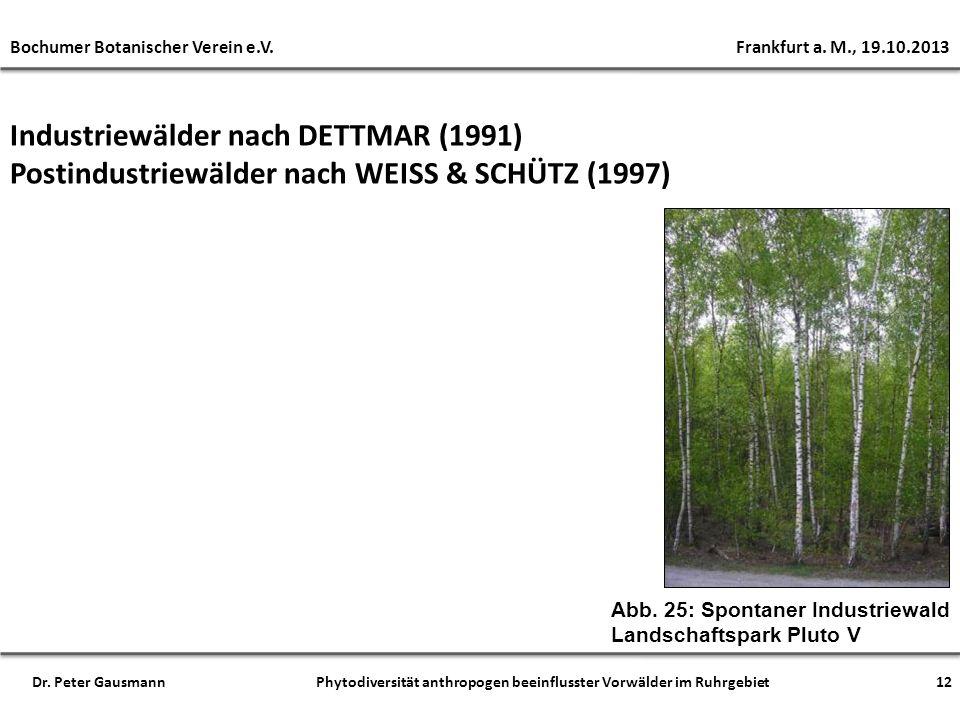 Industriewälder nach DETTMAR (1991) Postindustriewälder nach WEISS & SCHÜTZ (1997) Abb. 25: Spontaner Industriewald Landschaftspark Pluto V 12 Bochume
