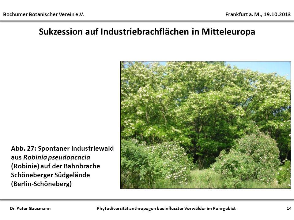 Sukzession auf Industriebrachflächen in Mitteleuropa Abb. 27: Spontaner Industriewald aus Robinia pseudoacacia (Robinie) auf der Bahnbrache Schöneberg