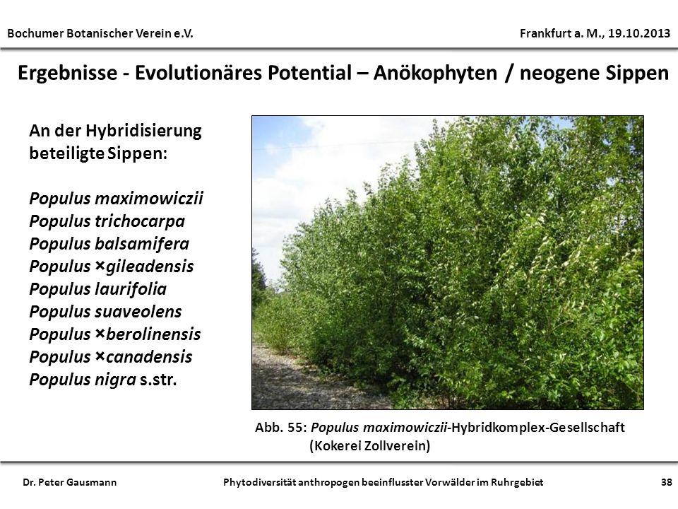 Ergebnisse - Evolutionäres Potential – Anökophyten / neogene Sippen Abb. 55: Populus maximowiczii-Hybridkomplex-Gesellschaft (Kokerei Zollverein) An d