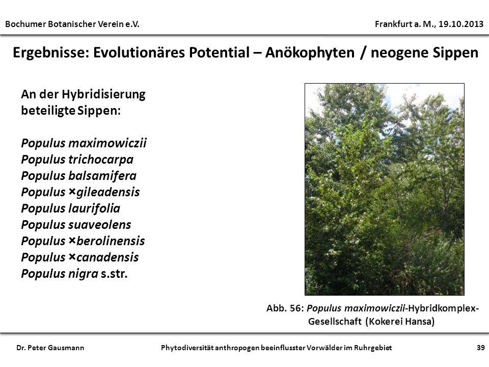 Ergebnisse: Evolutionäres Potential – Anökophyten / neogene Sippen Abb. 56: Populus maximowiczii-Hybridkomplex- Gesellschaft (Kokerei Hansa) An der Hy
