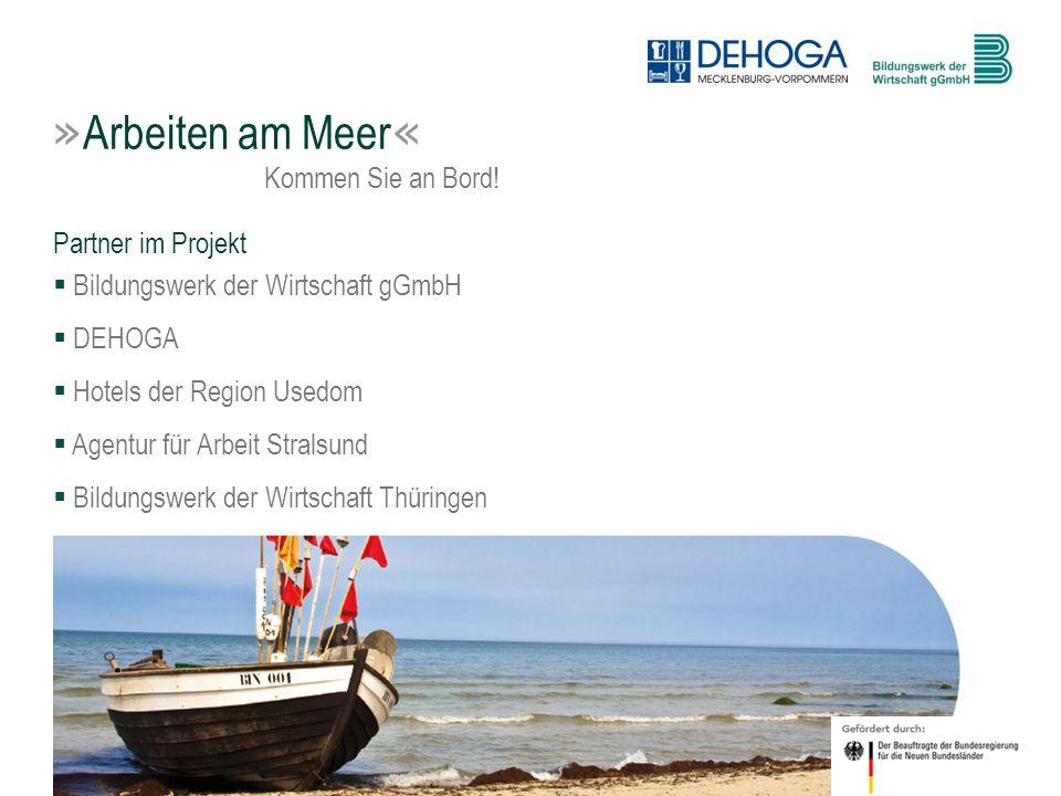3 © BdW gGmbH, Hasenwinkel, 20. Januar 2011 Partner im Projekt Bildungswerk der Wirtschaft gGmbH DEHOGA Hotels der Region Usedom Agentur für Arbeit St