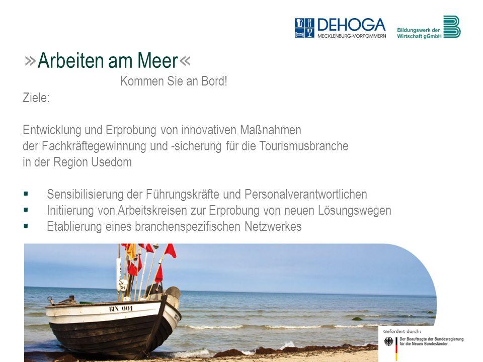 4 © BdW gGmbH, Hasenwinkel, 20. Januar 2011 Ziele: Entwicklung und Erprobung von innovativen Maßnahmen der Fachkräftegewinnung und -sicherung für die