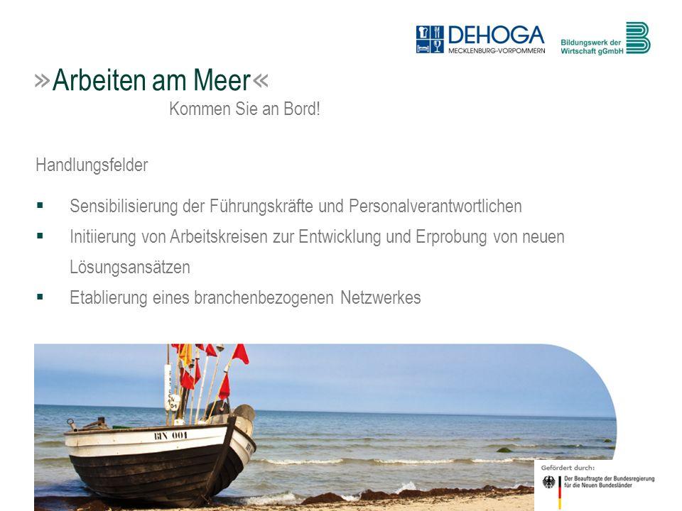 7 © BdW gGmbH, Hasenwinkel, 20. Januar 2011 » Arbeiten am Meer « Kommen Sie an Bord! Handlungsfelder Sensibilisierung der Führungskräfte und Personalv
