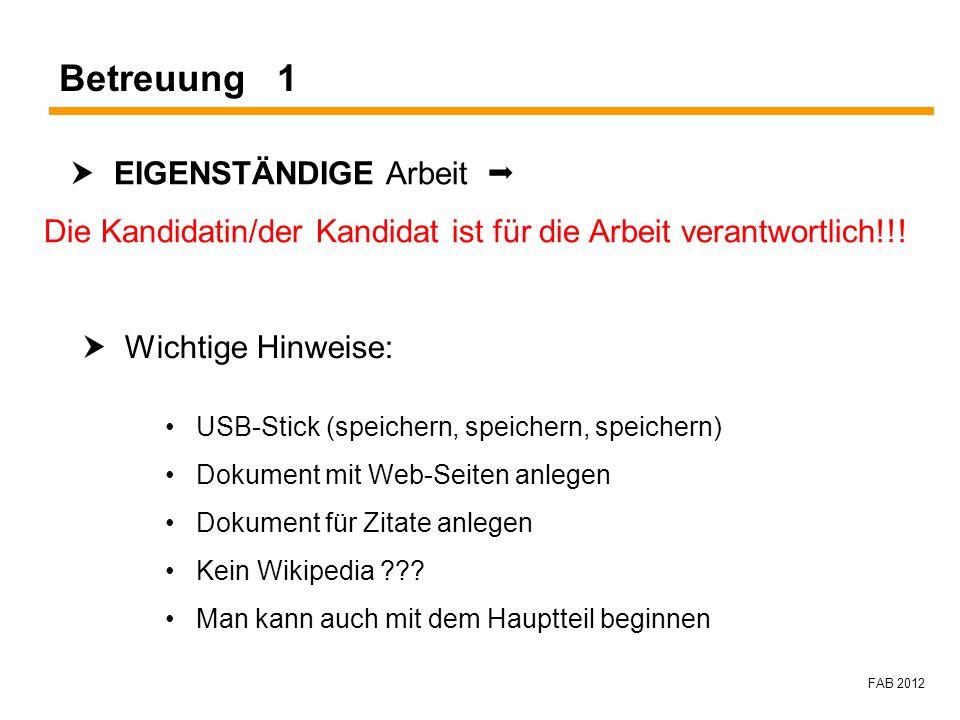 FAB 2012 Betreuung 1 EIGENSTÄNDIGE Arbeit Die Kandidatin/der Kandidat ist für die Arbeit verantwortlich!!! Wichtige Hinweise: USB-Stick (speichern, sp