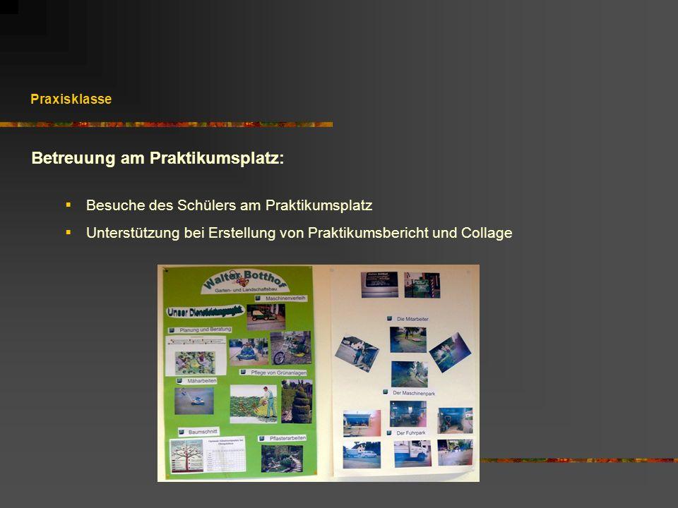 Praxisklasse Betreuung am Praktikumsplatz: Besuche des Schülers am Praktikumsplatz Unterstützung bei Erstellung von Praktikumsbericht und Collage