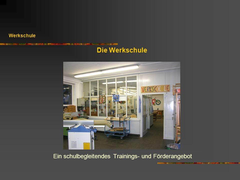 Die Werkschule Ein schulbegleitendes Trainings- und Förderangebot Werkschule