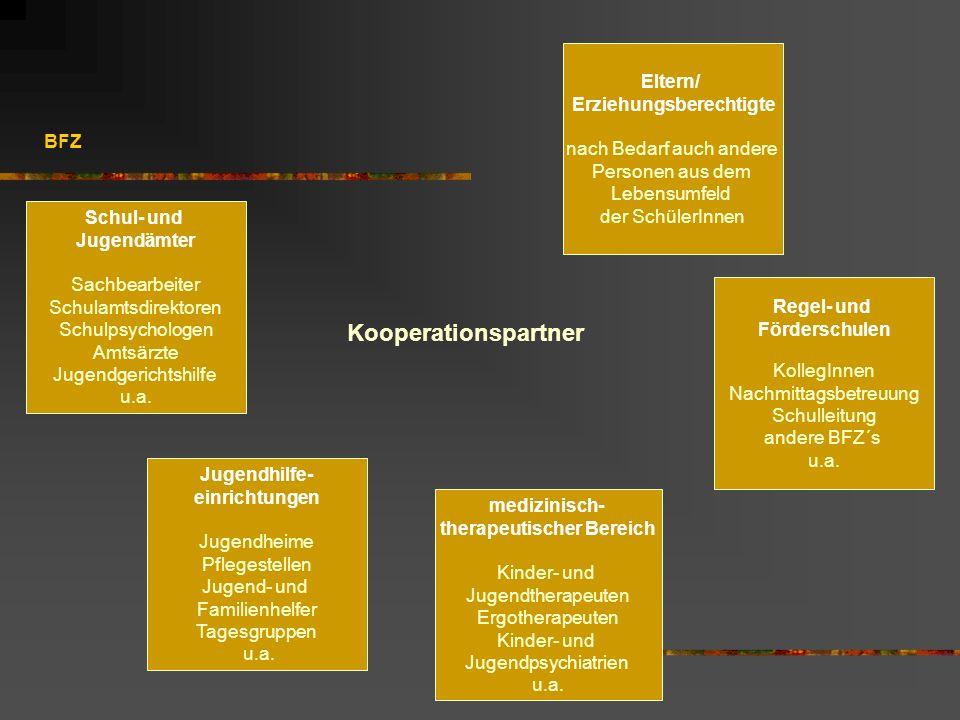 BFZ Kooperationspartner Regel- und Förderschulen KollegInnen Nachmittagsbetreuung Schulleitung andere BFZ´s u.a. Eltern/ Erziehungsberechtigte nach Be