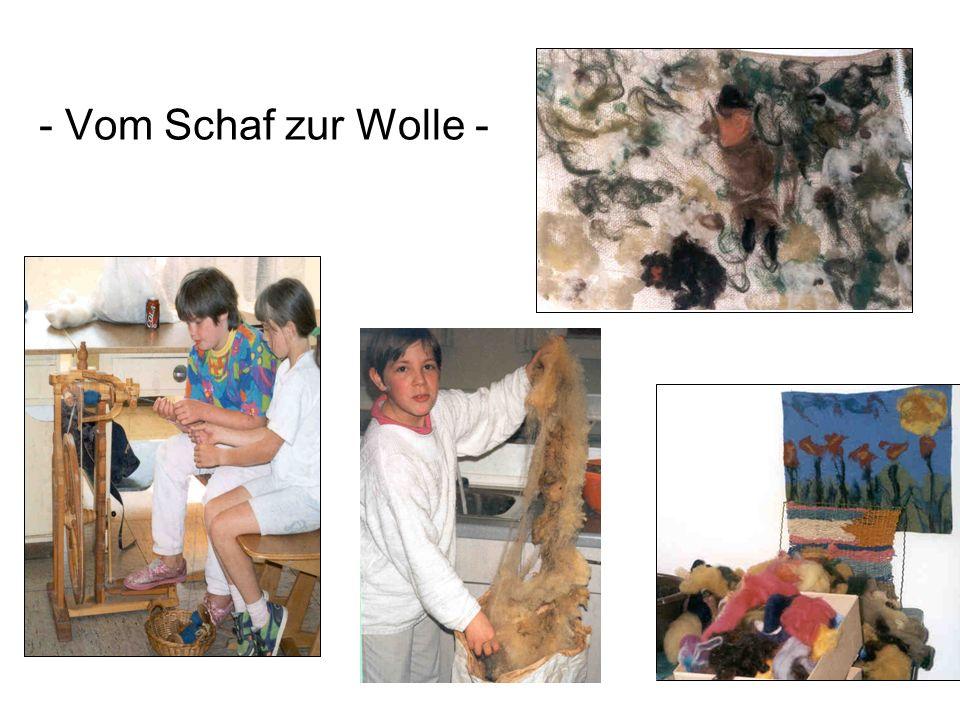 WIR GESTALTEN UND ARBEITEN MIT NATURMATERIALIEN - Vom Schaf zur Wolle -
