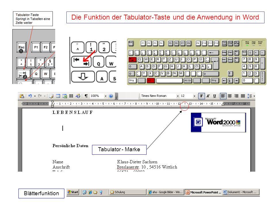 Der Windows-Explorer Der Windows Explorer (kurz Explorer) ist die voreingestellte Standard-Shell und der Standard-Dateimanager des weit verbreiteten Computer-Betriebssystems Microsoft Windows.