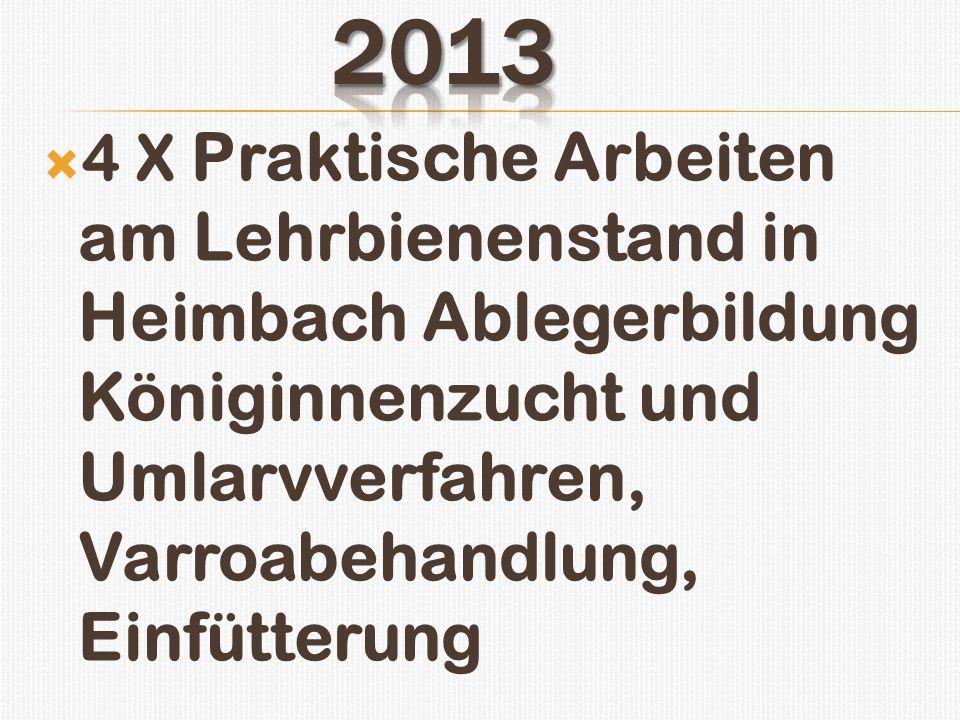 4 X Praktische Arbeiten am Lehrbienenstand in Heimbach Ablegerbildung Königinnenzucht und Umlarvverfahren, Varroabehandlung, Einfütterung