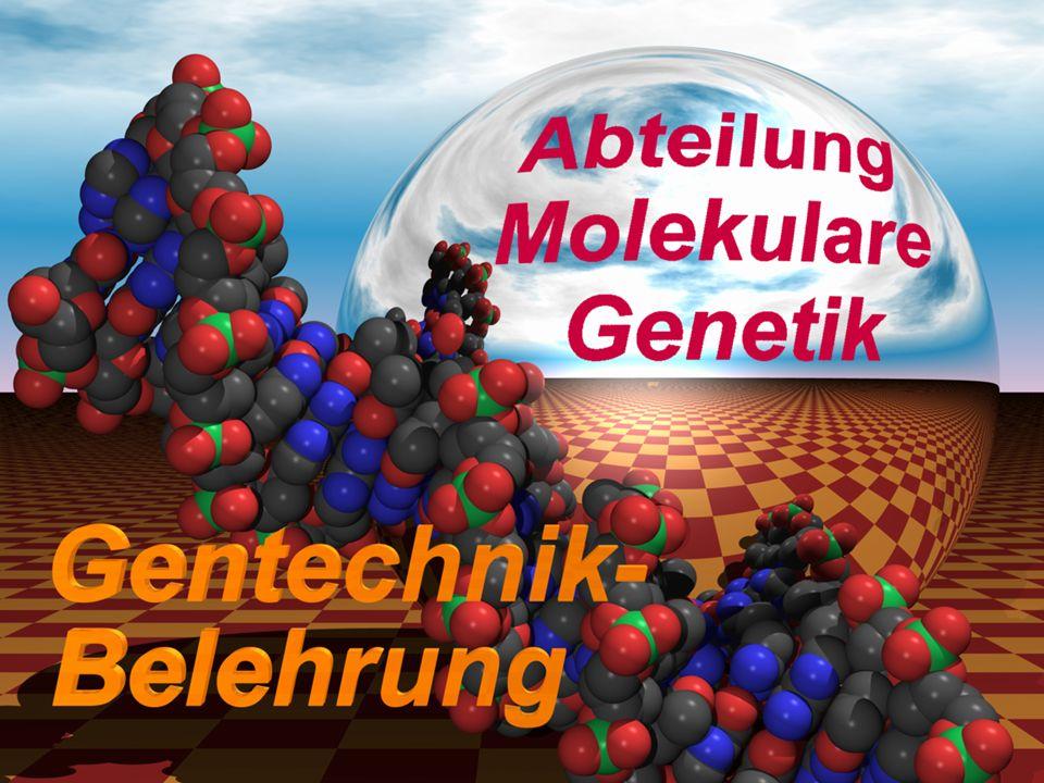 G vOG vO G vOG vO Gentechnikgesetz (GenTG) entechnisch eränderter rganismus entechnisch eränderter rganismus