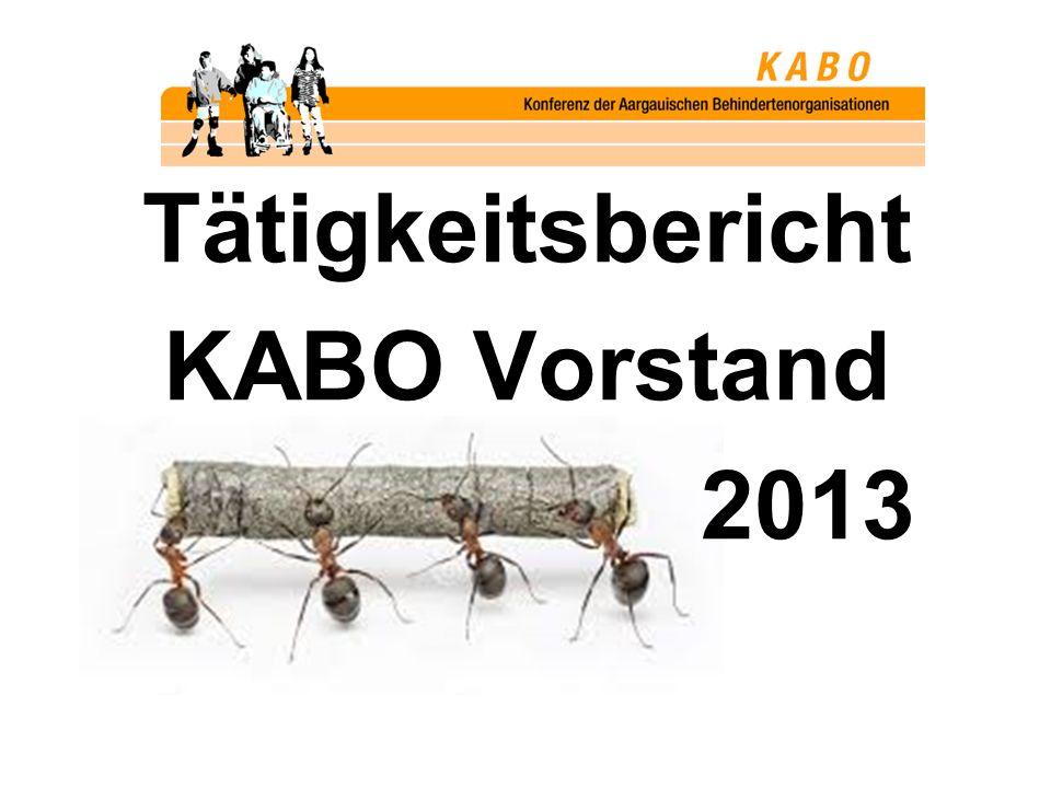 Tätigkeitsbericht KABO Vorstand 2013