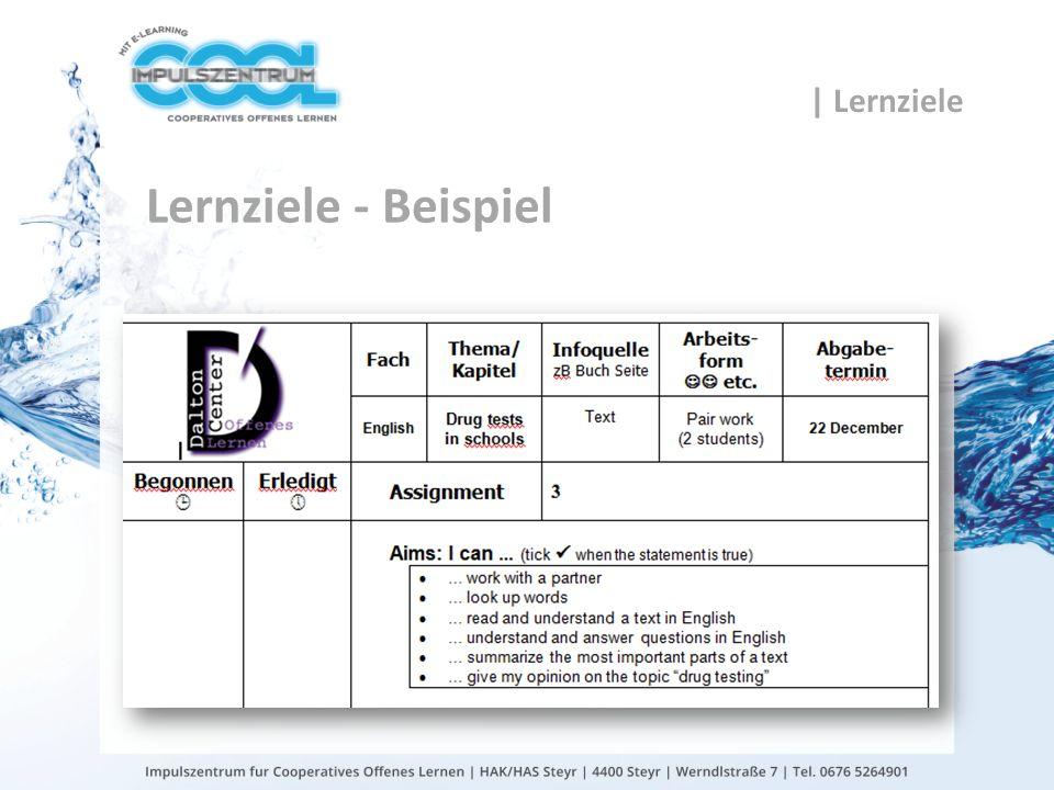 gtn gmbh Lernziele - Beispiel | Lernziele