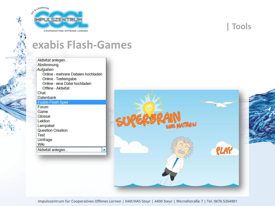 gtn gmbh exabis Flash-Games | Tools