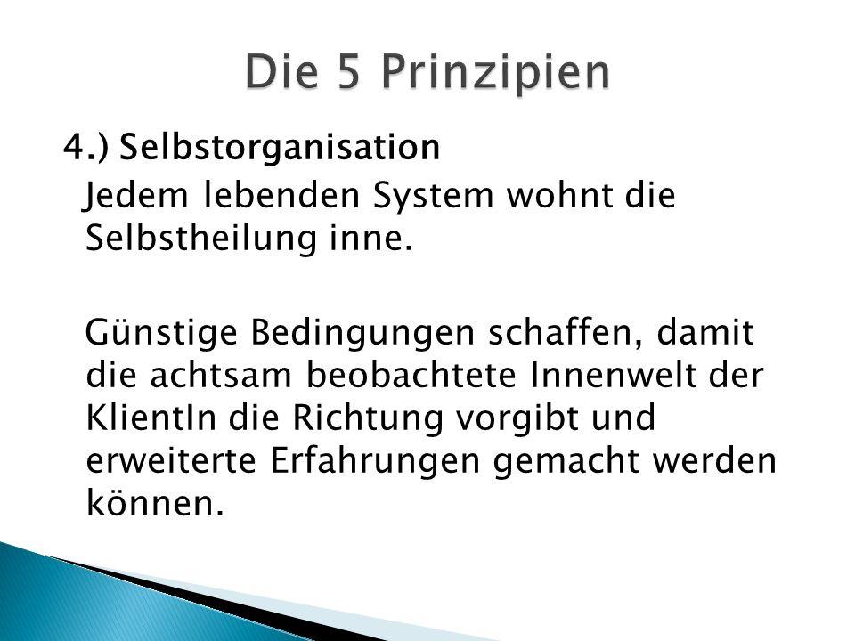 4.) Selbstorganisation Jedem lebenden System wohnt die Selbstheilung inne.