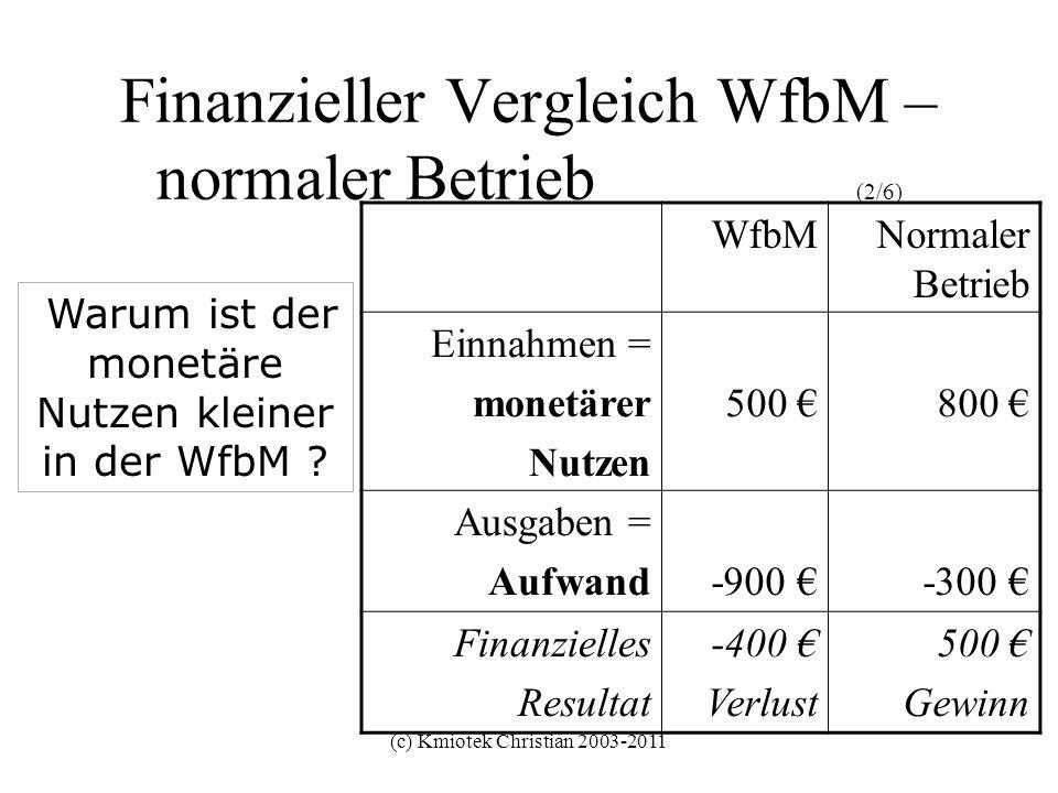 (c) Kmiotek Christian 2003-2011 Finanzieller Vergleich WfbM – normaler Betrieb (2/6) WfbMNormaler Betrieb Einnahmen = monetärer Nutzen 500 800 Ausgabe