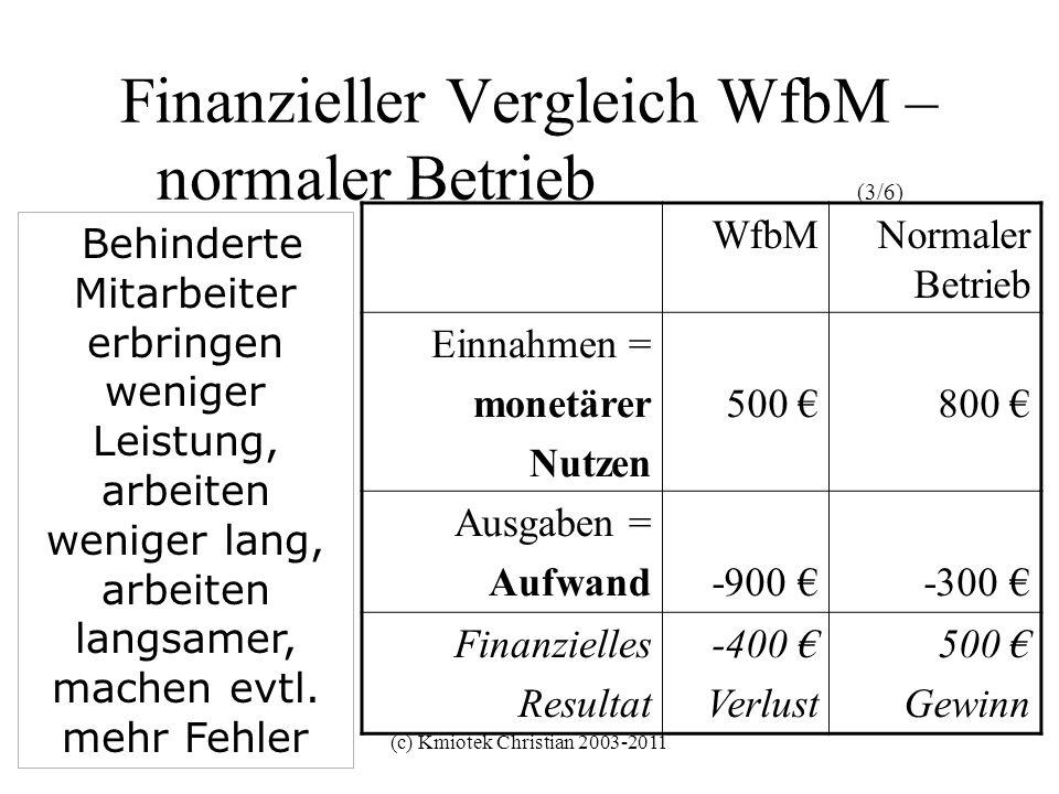 (c) Kmiotek Christian 2003-2011 Finanzieller Vergleich WfbM – normaler Betrieb (3/6) WfbMNormaler Betrieb Einnahmen = monetärer Nutzen 500 800 Ausgabe