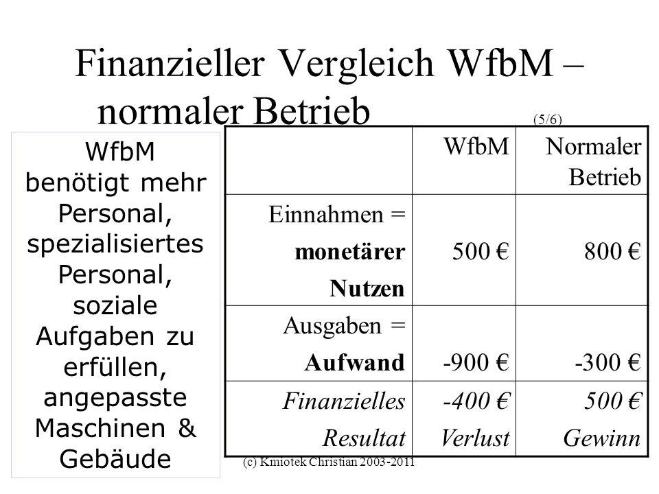 (c) Kmiotek Christian 2003-2011 Finanzieller Vergleich WfbM – normaler Betrieb (5/6) WfbMNormaler Betrieb Einnahmen = monetärer Nutzen 500 800 Ausgabe