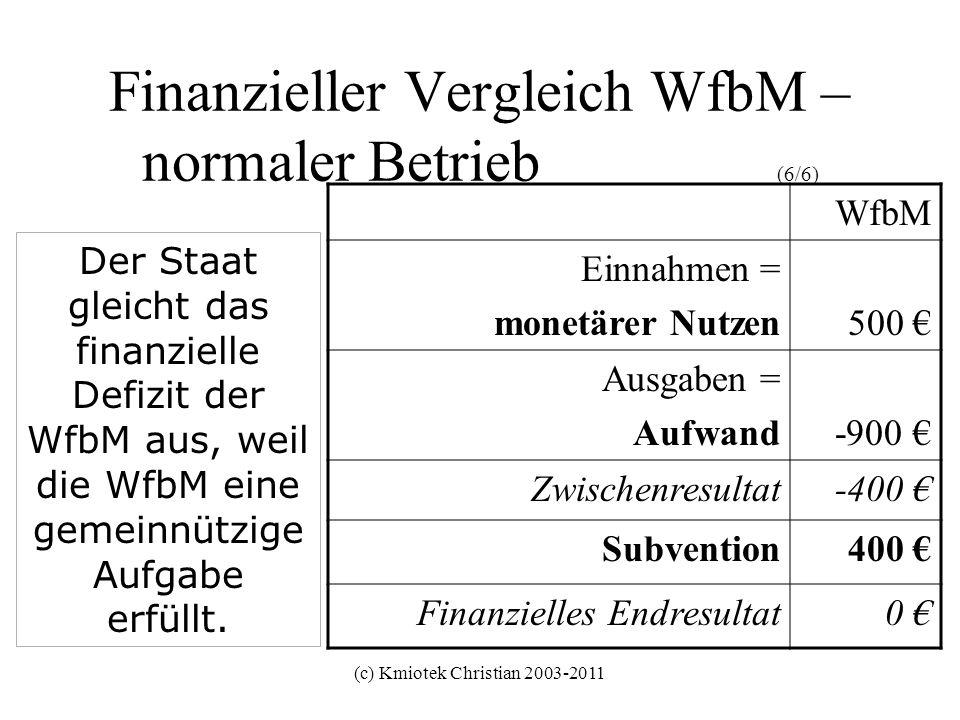(c) Kmiotek Christian 2003-2011 Finanzieller Vergleich WfbM – normaler Betrieb (6/6) WfbM Einnahmen = monetärer Nutzen500 Ausgaben = Aufwand-900 Zwisc