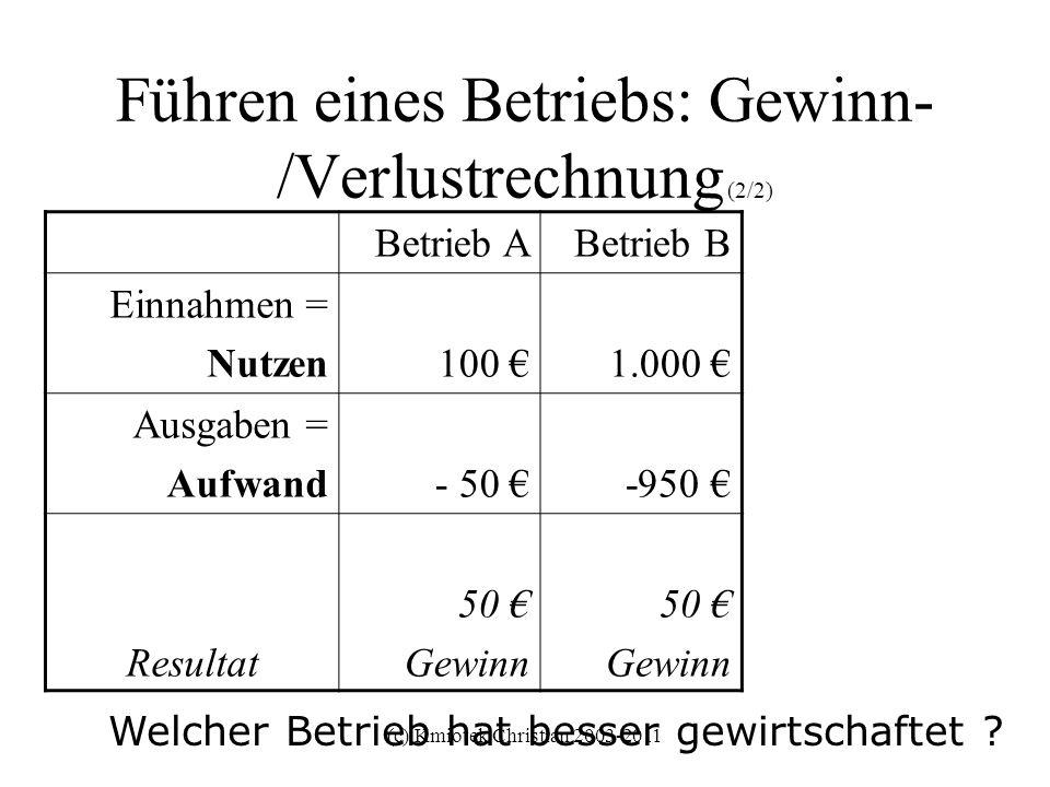 (c) Kmiotek Christian 2003-2011 Führen eines Betriebs: Gewinn- /Verlustrechnung (2/2) Betrieb ABetrieb B Einnahmen = Nutzen100 1.000 Ausgaben = Aufwan