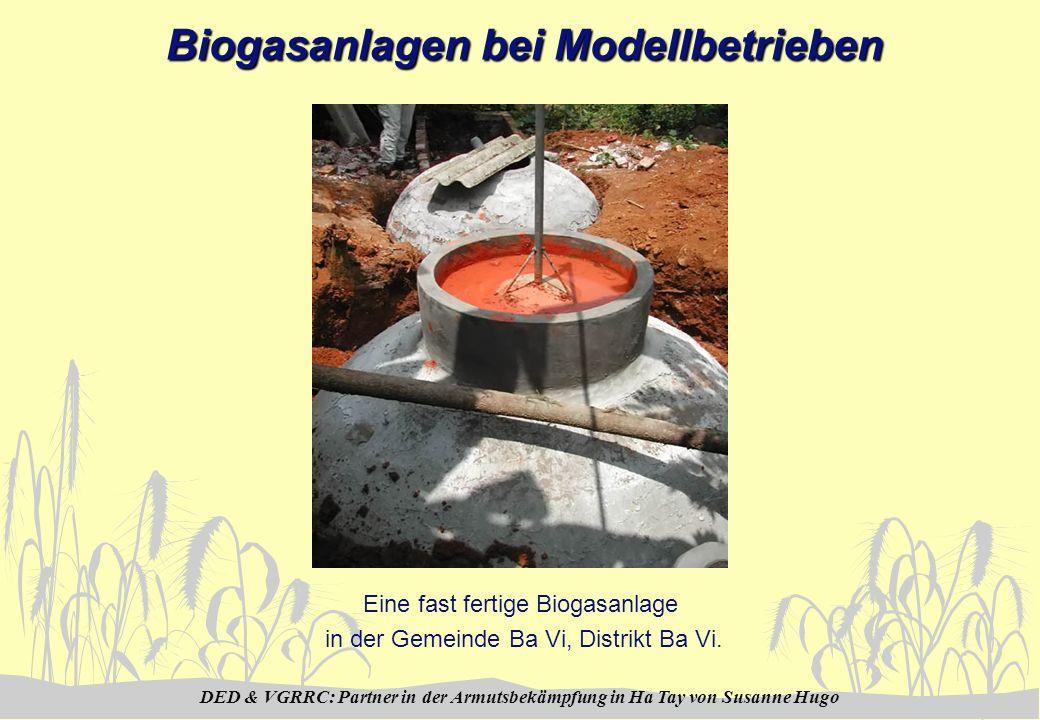 DED & VGRRC: Partner in der Armutsbekämpfung in Ha Tay von Susanne Hugo Biogasanlagen bei Modellbetrieben Eine fast fertige Biogasanlage in der Gemein