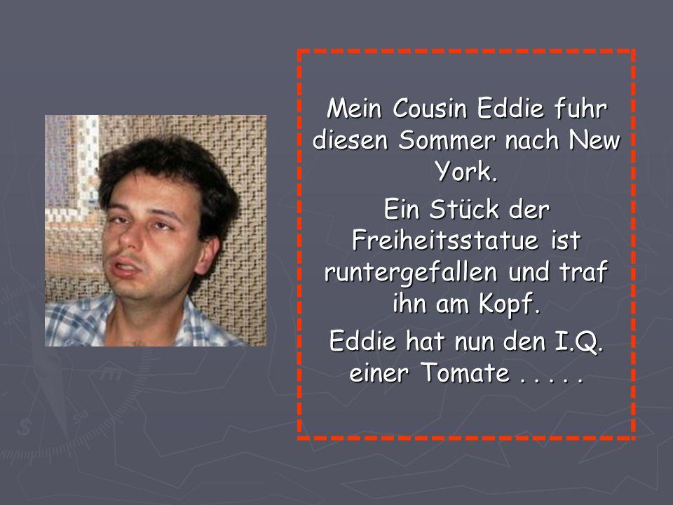 Mein Cousin Eddie fuhr diesen Sommer nach New York.