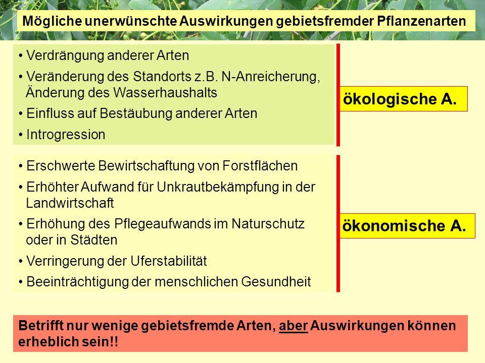 Projektgruppe Biodiversität und Landschaftsökologie Friedberg Auswirkungen von gebietsfremden Arten Betrifft nur wenige gebietsfremde Arten, aber Ausw