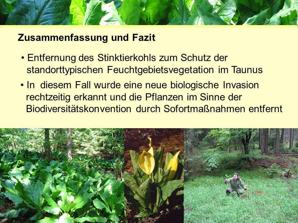 Projektgruppe Biodiversität und Landschaftsökologie 61169 Friedberg Entfernung des Stinktierkohls zum Schutz der standorttypischen Feuchtgebietsvegeta