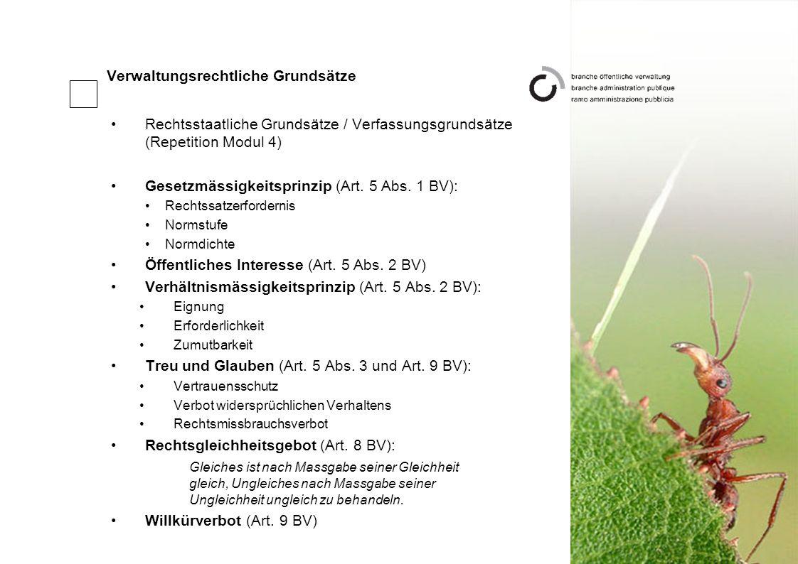 Verwaltungsrechtliche Grundsätze Rechtsstaatliche Grundsätze / Verfassungsgrundsätze (Repetition Modul 4) Gesetzmässigkeitsprinzip (Art.