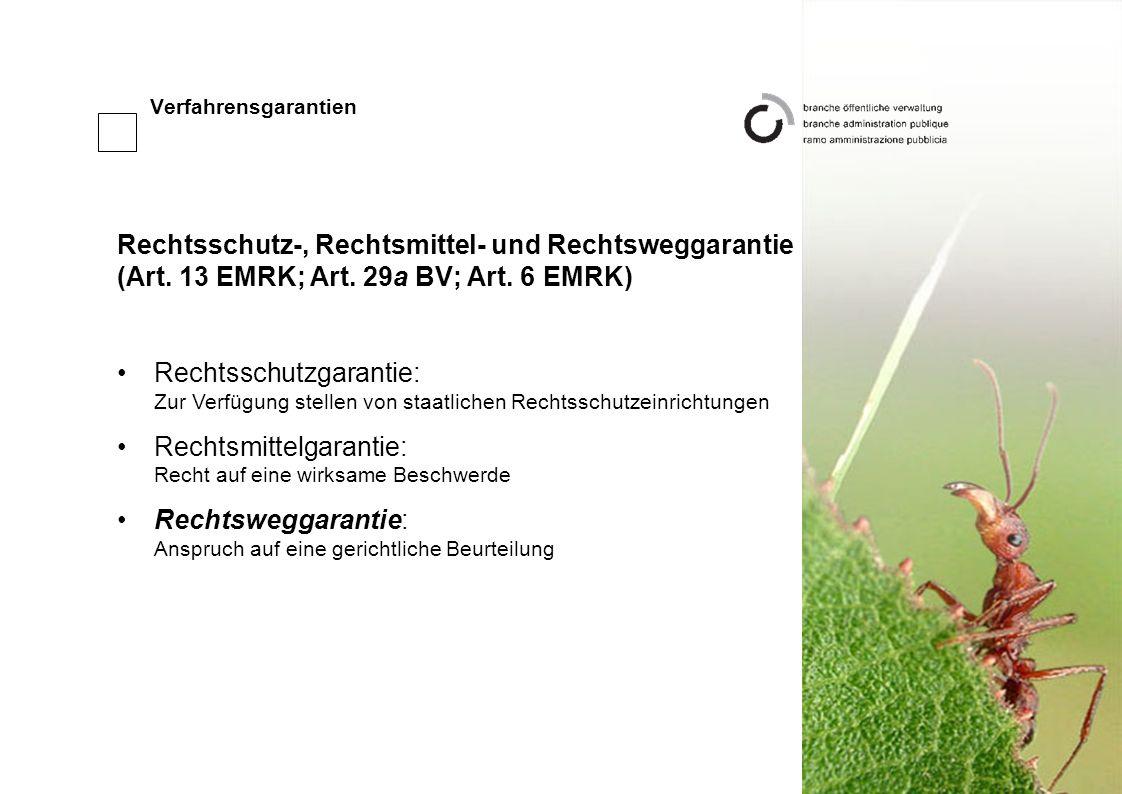 Verfahrensgarantien Rechtsschutz-, Rechtsmittel- und Rechtsweggarantie (Art.