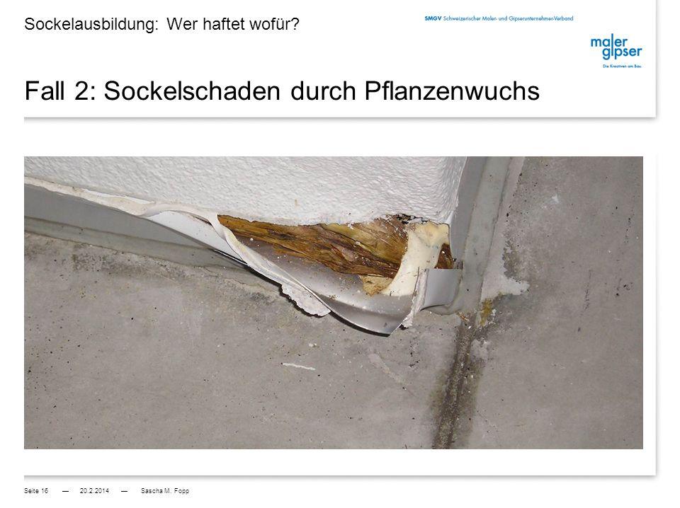 Fall 1: Sockelschaden durch Pflanzenwuchs Sockelausbildung: Wer haftet wofür.