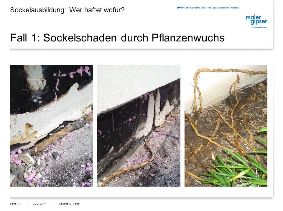 Fall 2: Sockelschaden durch Pflanzenwuchs Ursachen: - Architekt lässt Bambus im Atrium (Innenhof) pflanzen SIA Norm 118 Art.