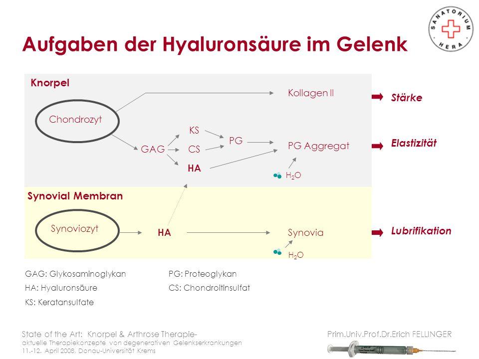 Aufgaben der Hyaluronsäure im Gelenk State of the Art: Knorpel & Arthrose Therapie- aktuelle Therapiekonzepte von degenerativen Gelenkserkrankungen 11