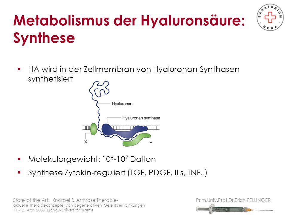 HA wird in der Zellmembran von Hyaluronan Synthasen synthetisiert Molekulargewicht: 10 6 -10 7 Dalton Synthese Zytokin-reguliert (TGF, PDGF, ILs, TNF..) State of the Art: Knorpel & Arthrose Therapie- aktuelle Therapiekonzepte von degenerativen Gelenkserkrankungen 11.-12.