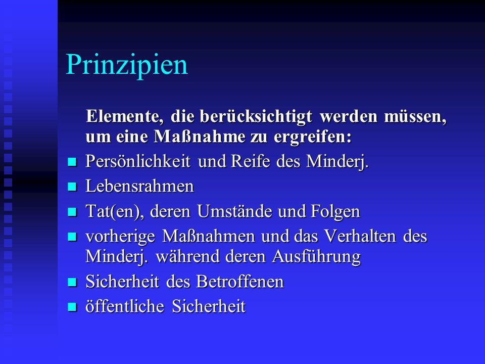 Prinzipien Elemente, die berücksichtigt werden müssen, um eine Maßnahme zu ergreifen: Elemente, die berücksichtigt werden müssen, um eine Maßnahme zu
