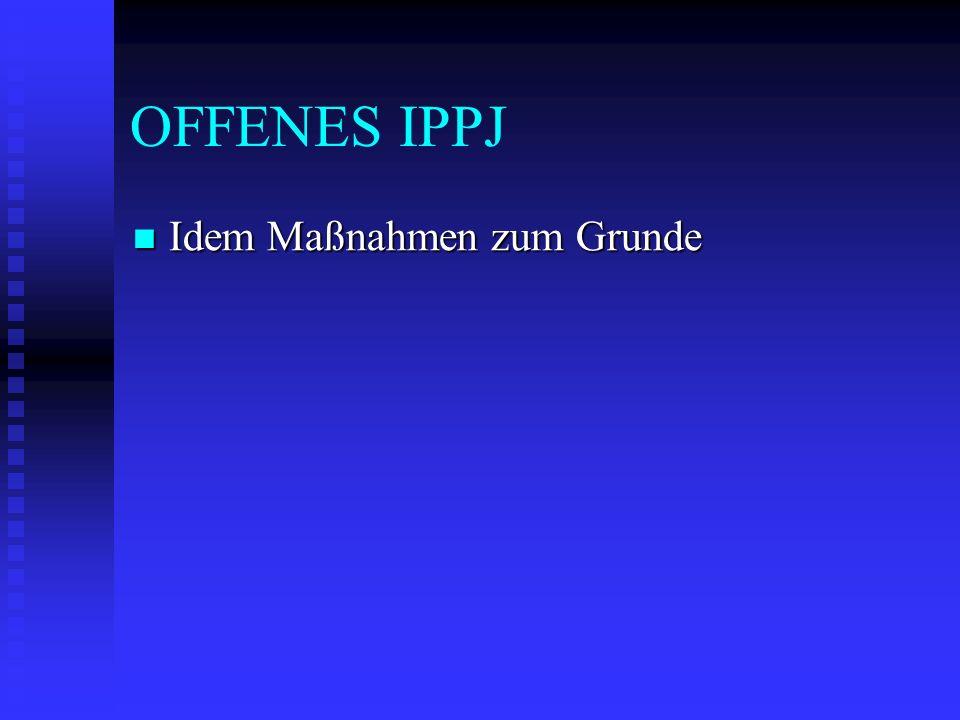 OFFENES IPPJ Idem Maßnahmen zum Grunde Idem Maßnahmen zum Grunde