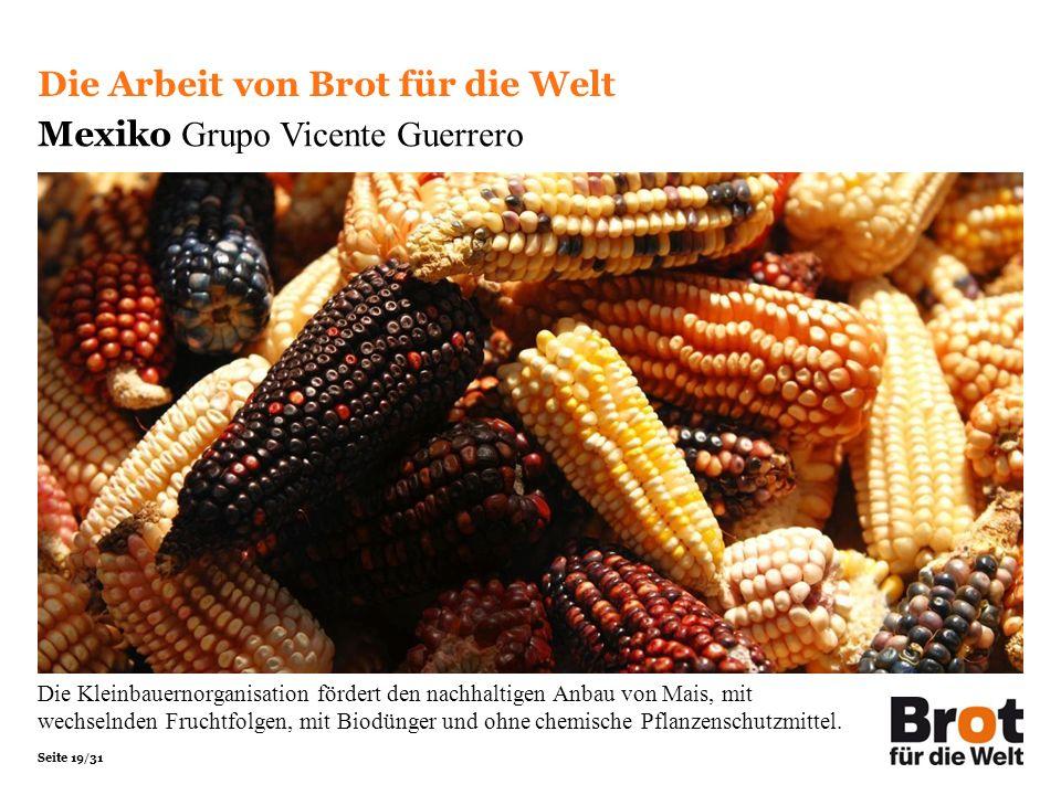 Seite 19/31 Die Arbeit von Brot für die Welt Mexiko Grupo Vicente Guerrero Die Kleinbauernorganisation fördert den nachhaltigen Anbau von Mais, mit wechselnden Fruchtfolgen, mit Biodünger und ohne chemische Pflanzenschutzmittel.