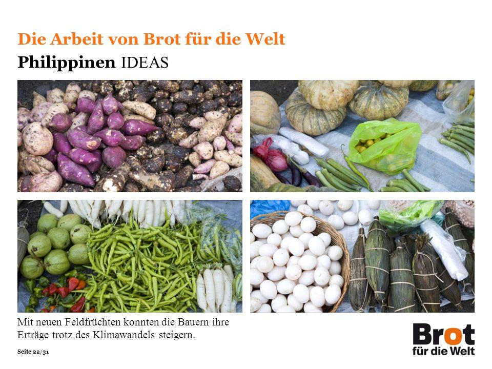 Seite 22/31 Die Arbeit von Brot für die Welt Philippinen IDEAS Mit neuen Feldfrüchten konnten die Bauern ihre Erträge trotz des Klimawandels steigern.