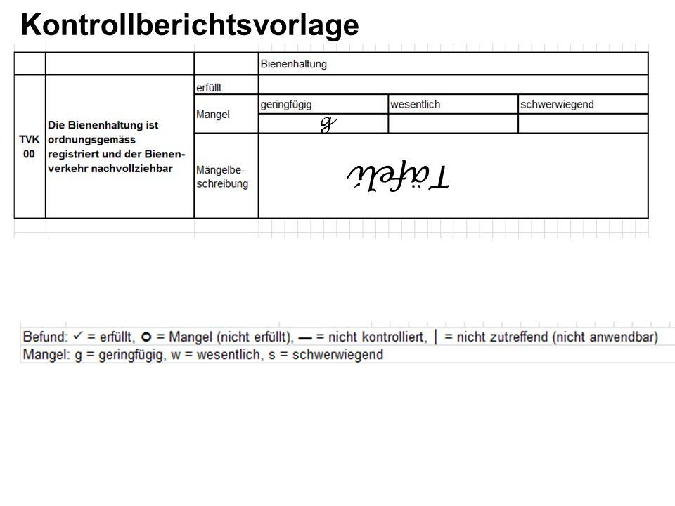 Kontrollberichtsvorlage Täfeli g