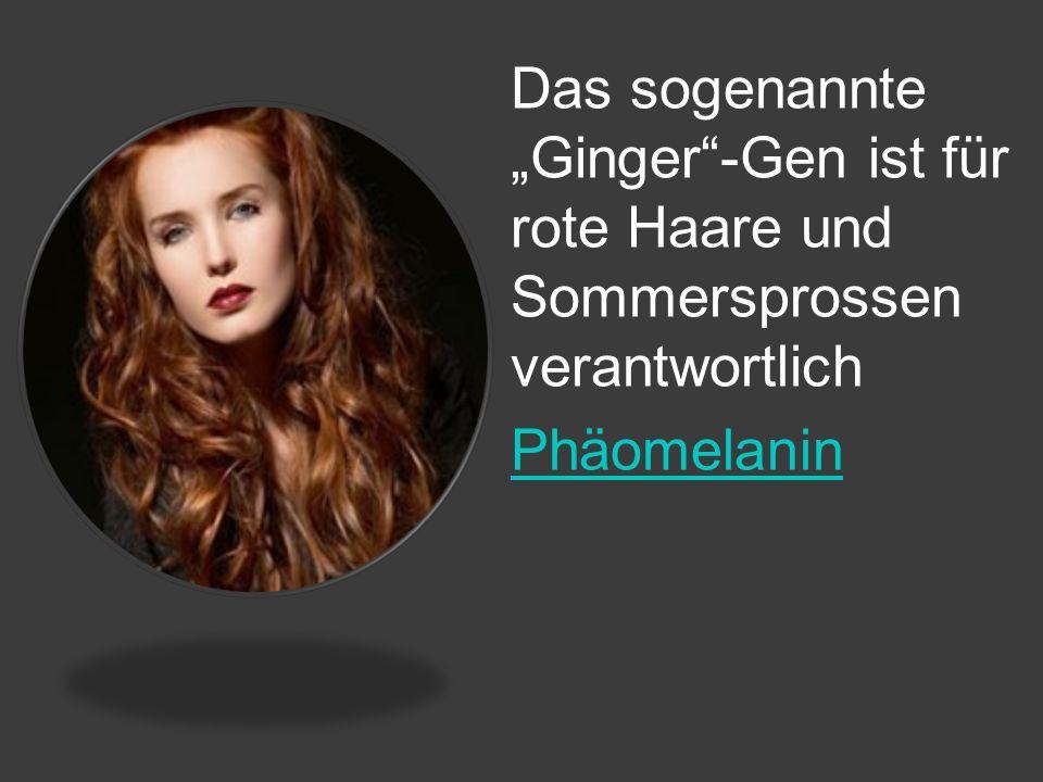 Das sogenannte Ginger-Gen ist für rote Haare und Sommersprossen verantwortlich Phäomelanin
