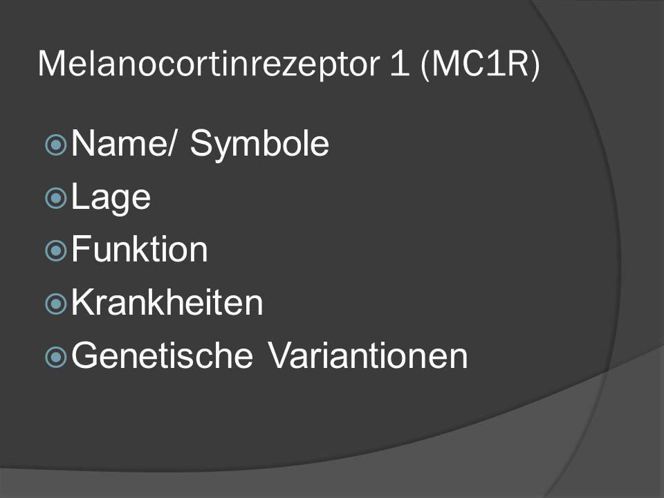 Melanocortinrezeptor 1 (MC1R) Name/ Symbole Lage Funktion Krankheiten Genetische Variantionen